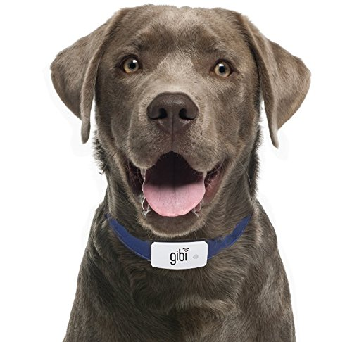 Gibi Pet GPS Tracker