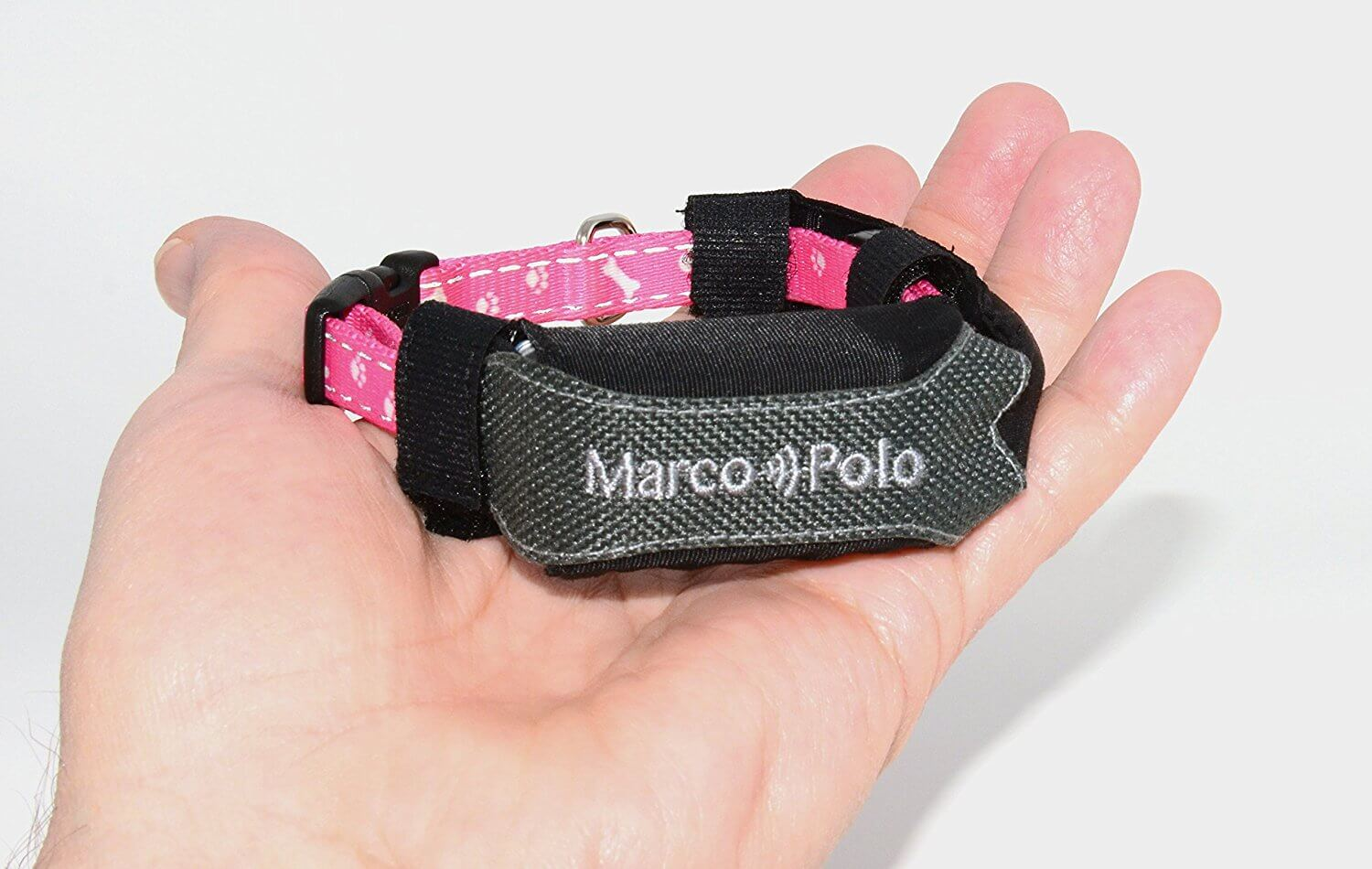 MARCOPOLO Advanced Pet Tracking