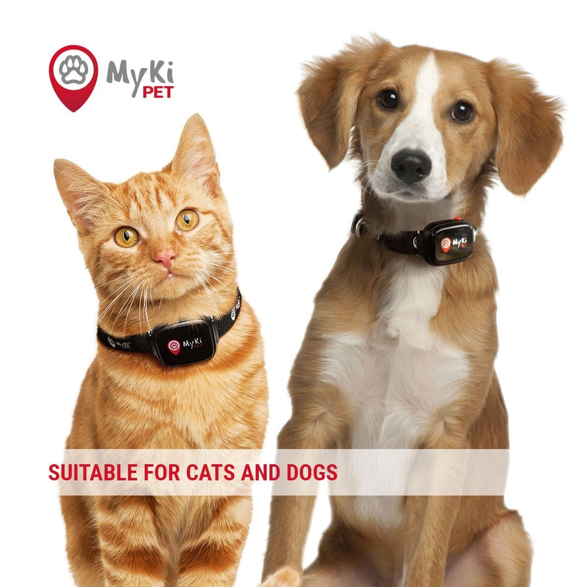 MyKi Pet Real Time GPS/GSM tracker