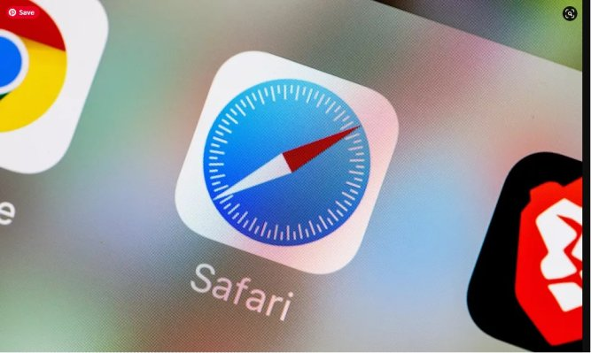 Improve Your Safari's Experience